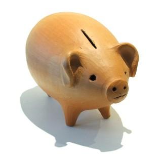 Wieviel Geld braucht man zum leben im monat